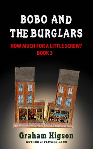 Cover for Bobo and the Burglars